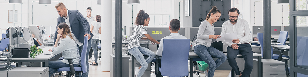 Young people in an office - 100x250